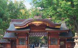 東京府中にある大國魂神社で御朱印!
