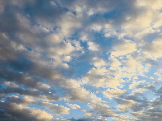 今日の空を記しておこう。2021Jan27