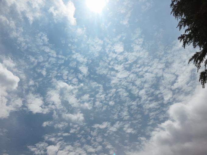 今日の空を記しておこう。2021Jun18