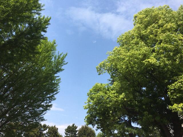 第277回TOEIC L&Rテストの感想(2021年9月)【行ってきた】超難しかったー!!!